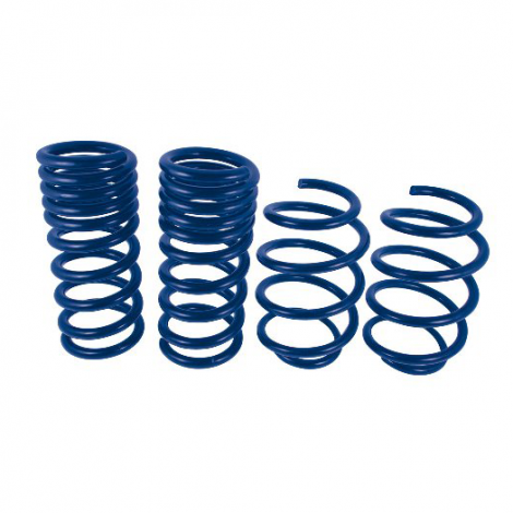 Ford Performance Street Lowering Springs Mustang 2015-2017