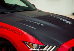Anderson Composites Shelby GT350 Dry Carbon Fiber Hood