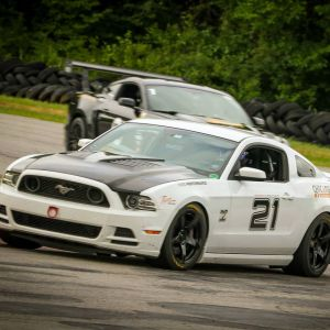 Tiger Racing Hood Mustang 2013-2014 - CLEAR CARBON