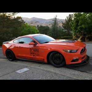 Tiger Racing Hood Mustang 2015-2017